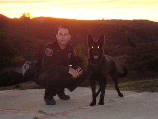 security officer with k-9 in escondido